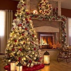 árvore tradicional