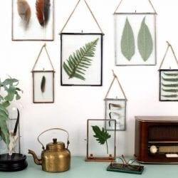 quadros com plantas
