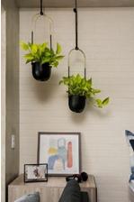 plantas para decorar ambientes
