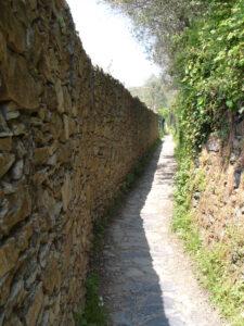 caminho a Corniglia