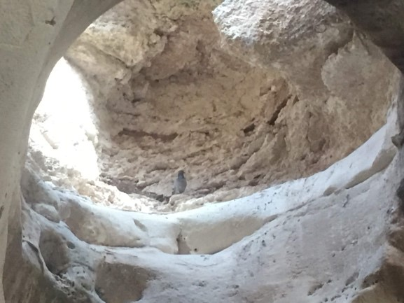 Beit Guvrin-Maresha National Park